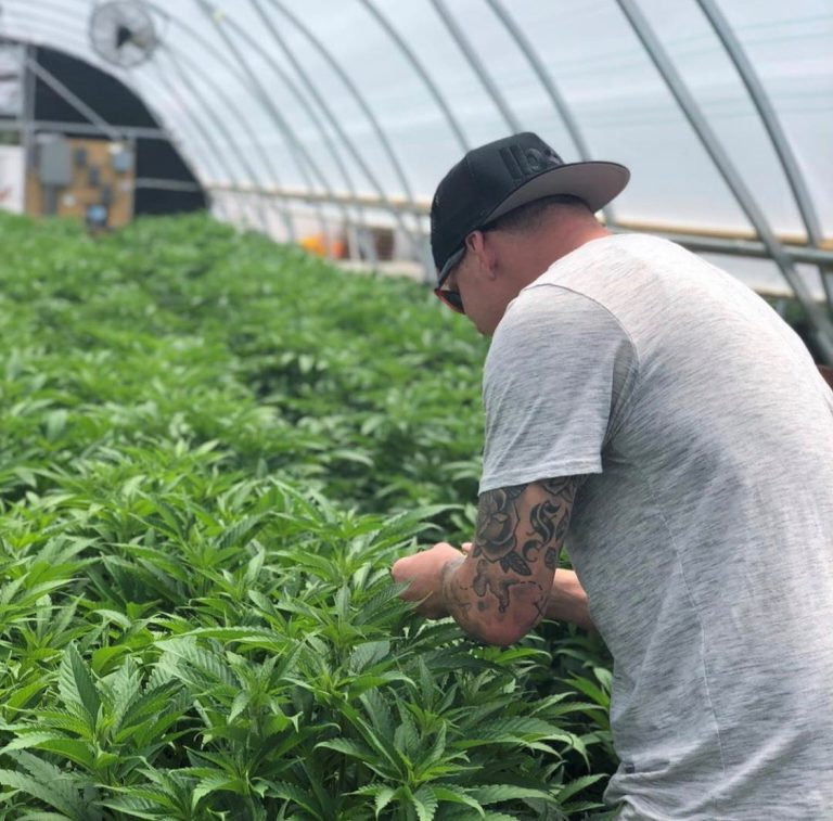 The Cannabis Industry is Headed For a Dazzling Future, Says Cannabis Expert Sean Smutny