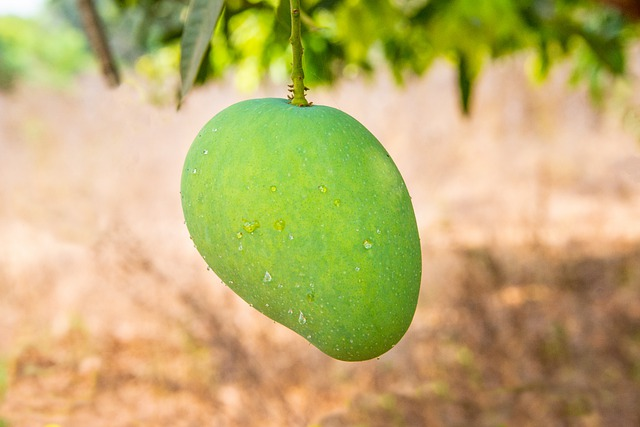5 food items that are to be completely avoided after you eat mangoes