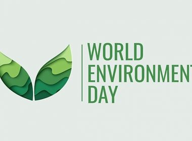 June 5th is celebrated as World Environment Day – What are the activities planned in June, by the UN?