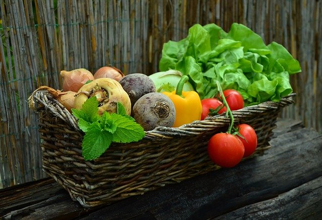 Some common vegetables that have harmful effects when eaten raw or in excess.